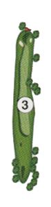golfholes_03