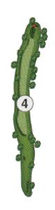 golfholes_4