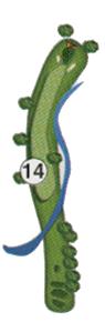 golfholes_14